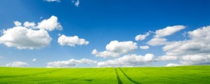 wallpaper_of_the_pure_natural_scenery_vast_grassland